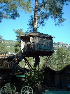 treehouse accommodation 'the penthouse'
